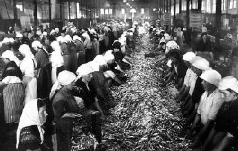 As raices da Galicia industrial: Historia do sector da conserva